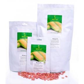 Фіона (Солодка Мрія) F1 – цукрова кукурудза, МНАГОР