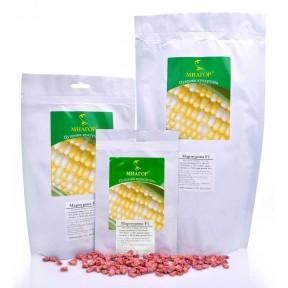 Мармурова F1 – цукрова кукурудза, МНАГОР