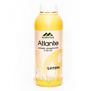Атланте – добриво, Vitera