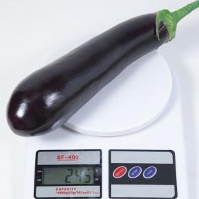 Баклажан KS 4804 F1, Kitano Seeds