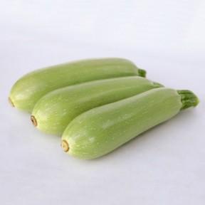 Кабачок KS 1241 F1, Kitano Seeds