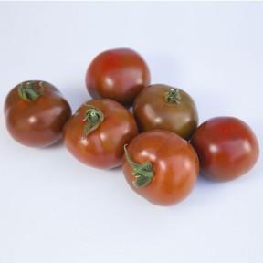 Томат KS 3900 F1, Kitano Seeds